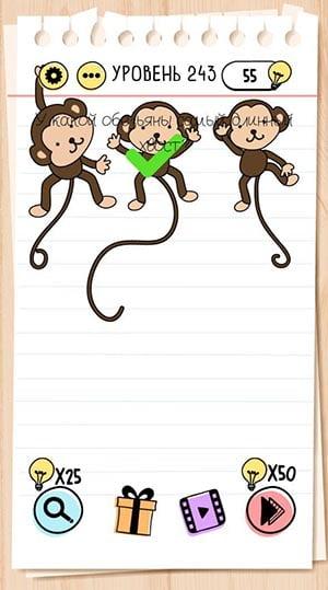 У какой обезьяны самый длинный хвост? 243 уровень Brain Test